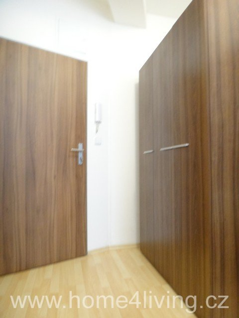 Pronájem bytu 1+kk, Brno - Centrum, ul. Radlas, zařízený